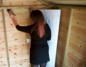 How to insulate a shed - Anti-Fungal Wash