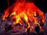 Какие дрова лучше для печки в доме – Какими дровами лучше топить печь